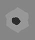 Convy.ai Logo